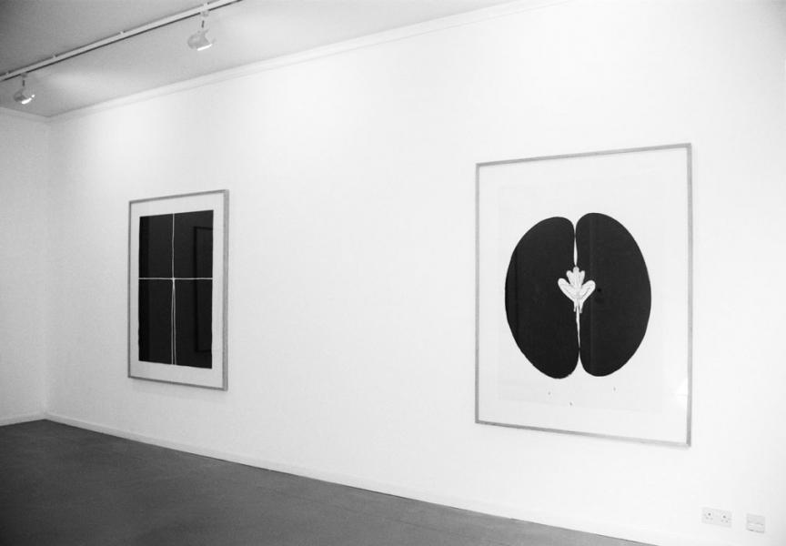 SPACE and SEED, 1985